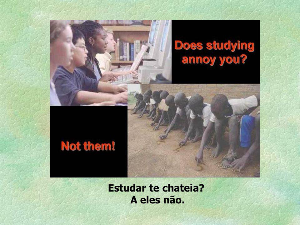 Estudar te chateia A eles não.