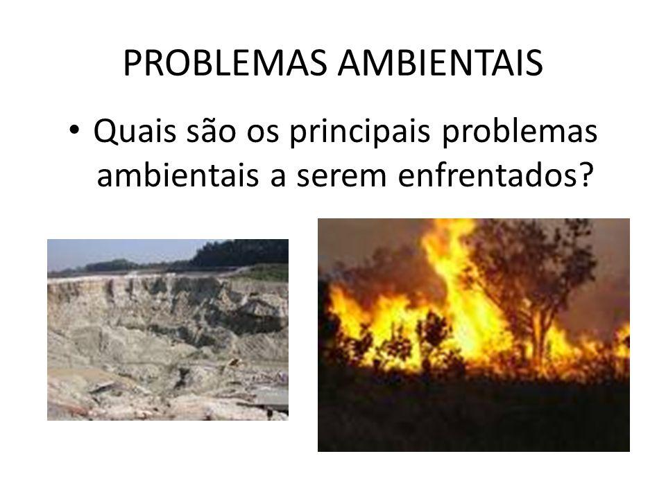 Quais são os principais problemas ambientais a serem enfrentados