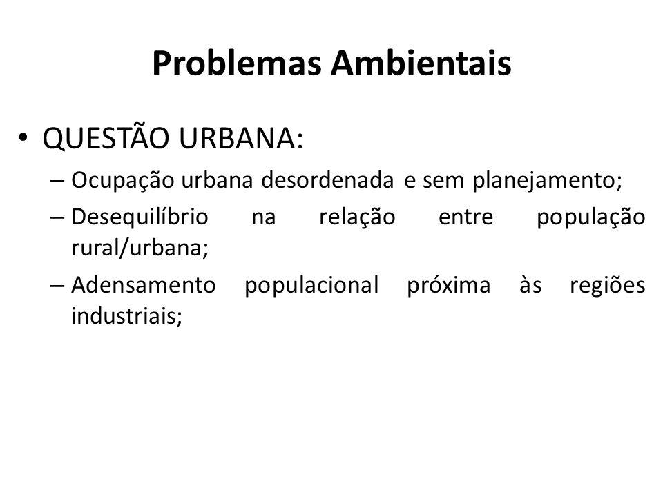 Problemas Ambientais QUESTÃO URBANA: