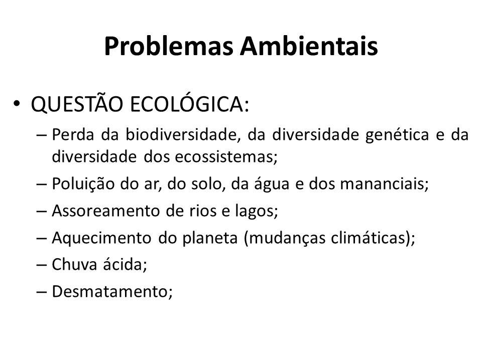 Problemas Ambientais QUESTÃO ECOLÓGICA: