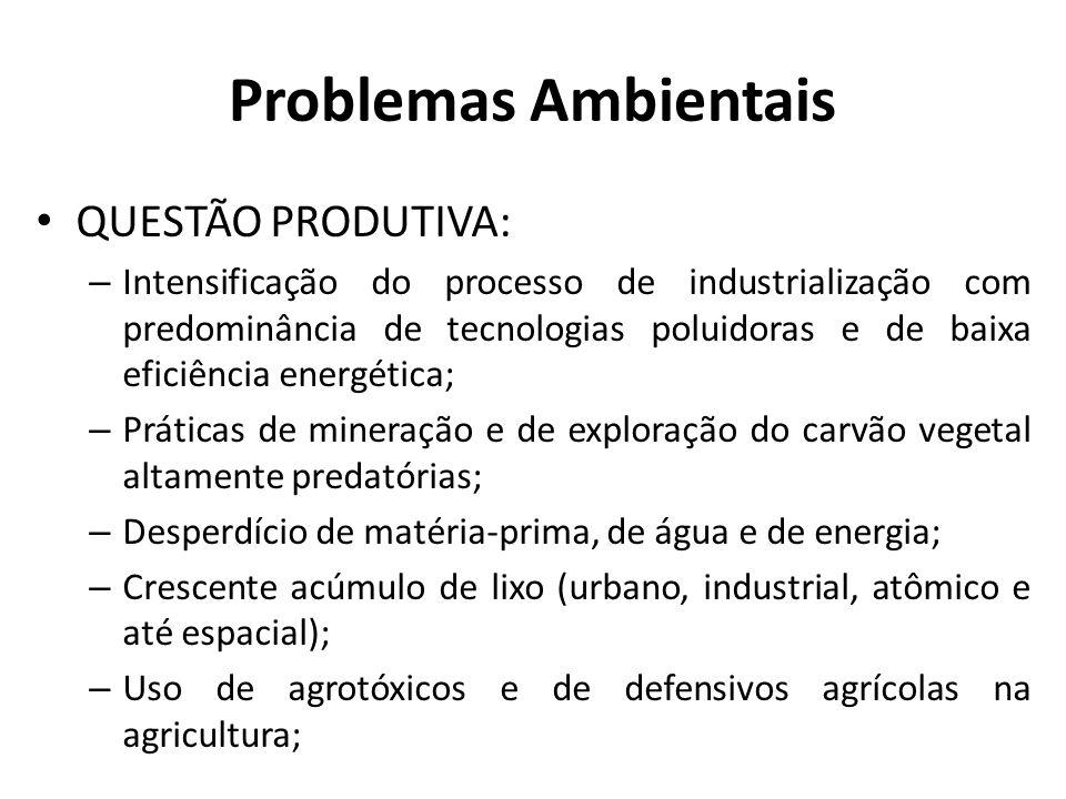 Problemas Ambientais QUESTÃO PRODUTIVA: