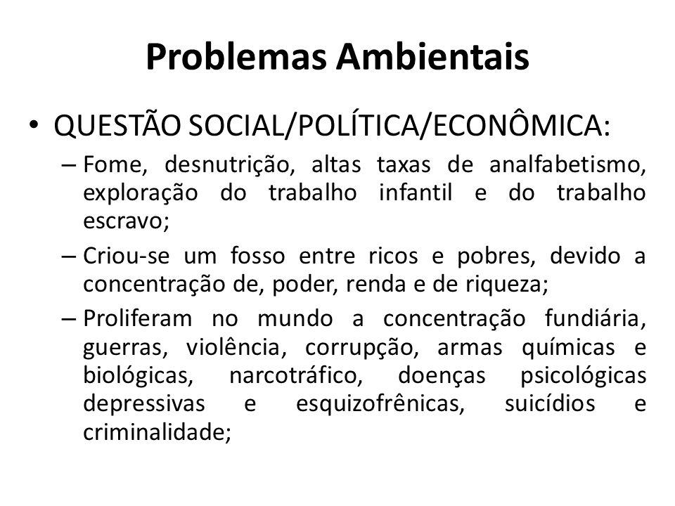 Problemas Ambientais QUESTÃO SOCIAL/POLÍTICA/ECONÔMICA: