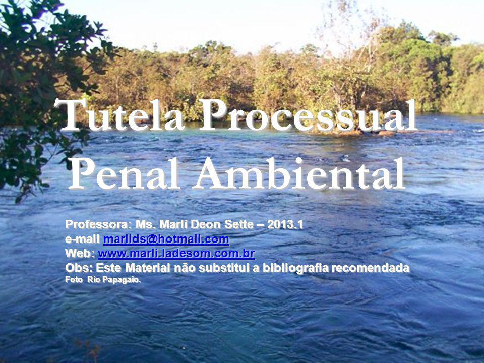 Tutela Processual Penal Ambiental RESPONSABILIDADE PENAL