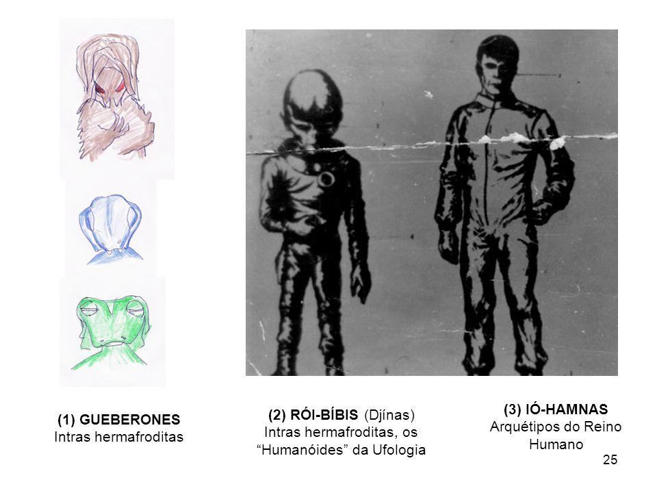 (3) IÓ-HAMNAS Arquétipos do Reino Humano