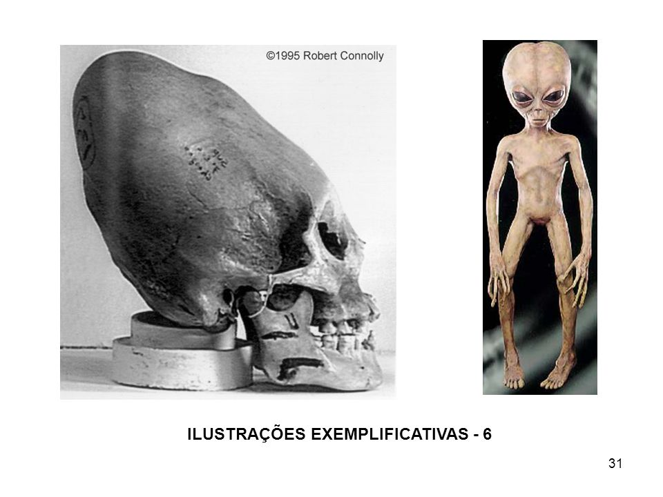 ILUSTRAÇÕES EXEMPLIFICATIVAS - 6