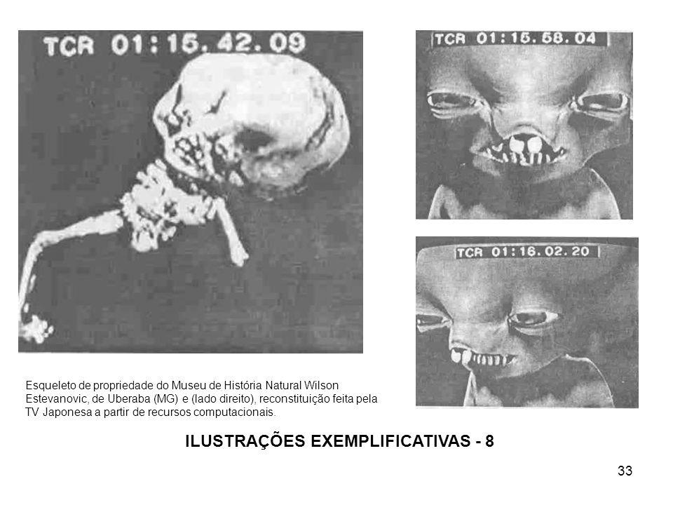 ILUSTRAÇÕES EXEMPLIFICATIVAS - 8