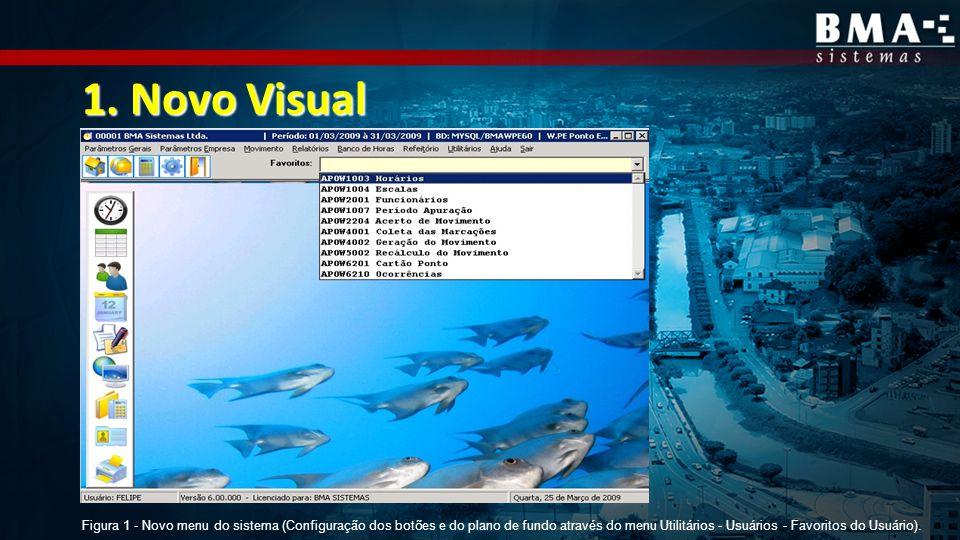 1. Novo Visual