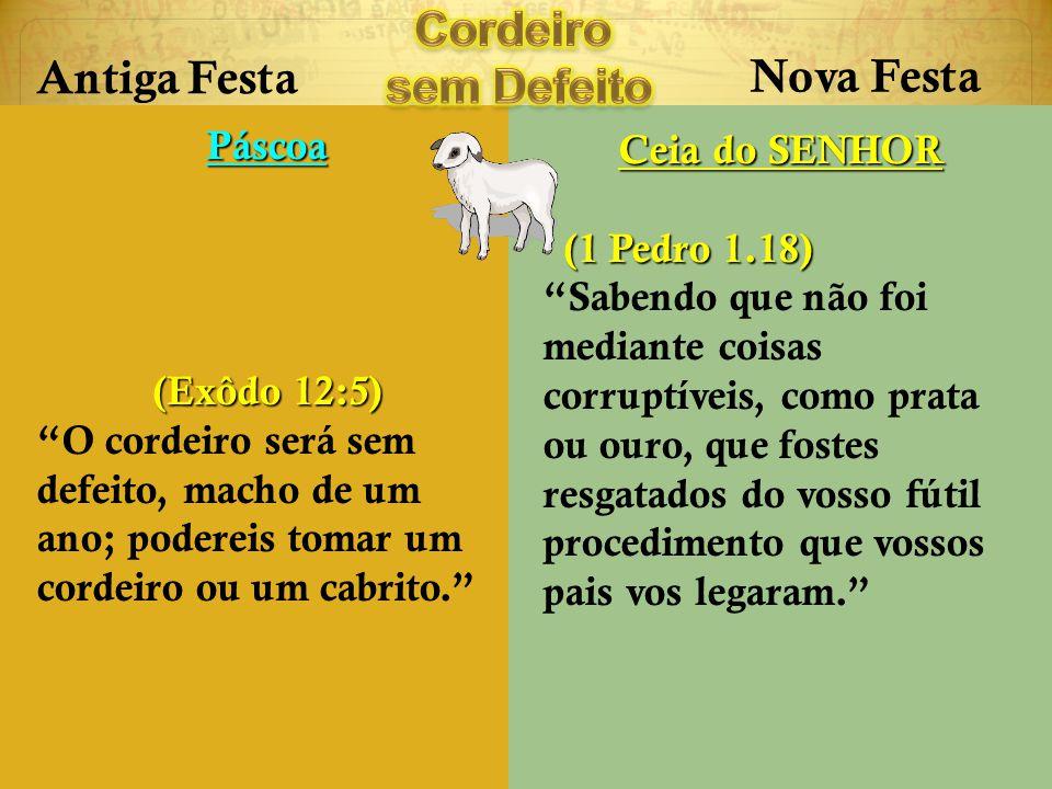 Cordeiro sem Defeito Antiga Festa Nova Festa Páscoa Ceia do SENHOR