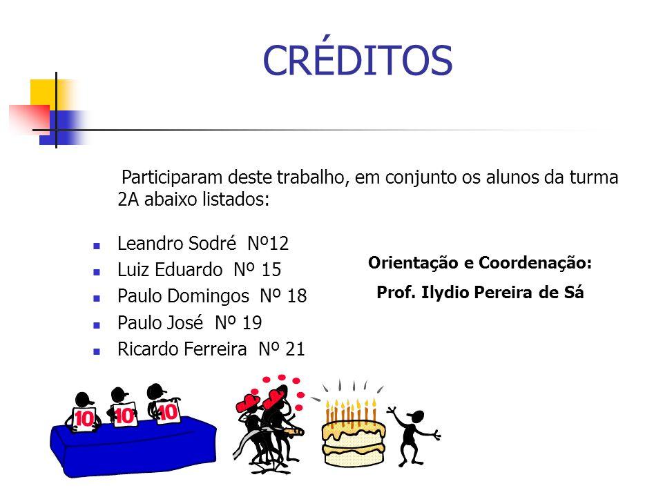 Orientação e Coordenação: Prof. Ilydio Pereira de Sá