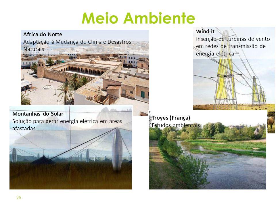Meio Ambiente Wind-it Inserção de turbinas de vento em redes de transmissão de energia elétrica.