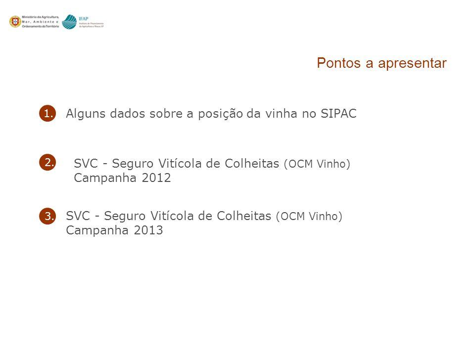 Pontos a apresentar Alguns dados sobre a posição da vinha no SIPAC