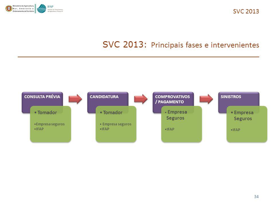 SVC 2013: Principais fases e intervenientes