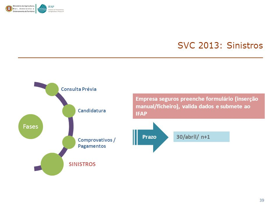 SVC 2013: Sinistros Fases SINISTROS