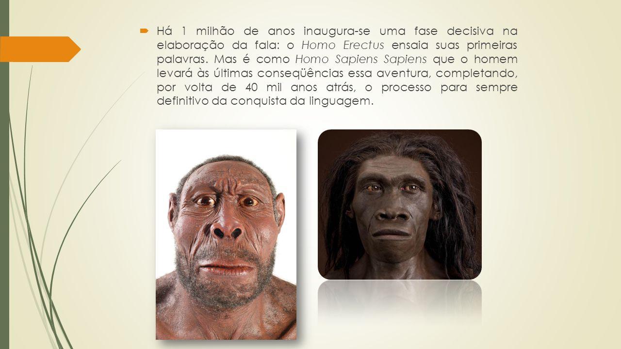 Há 1 milhão de anos inaugura-se uma fase decisiva na elaboração da fala: o Homo Erectus ensaia suas primeiras palavras.
