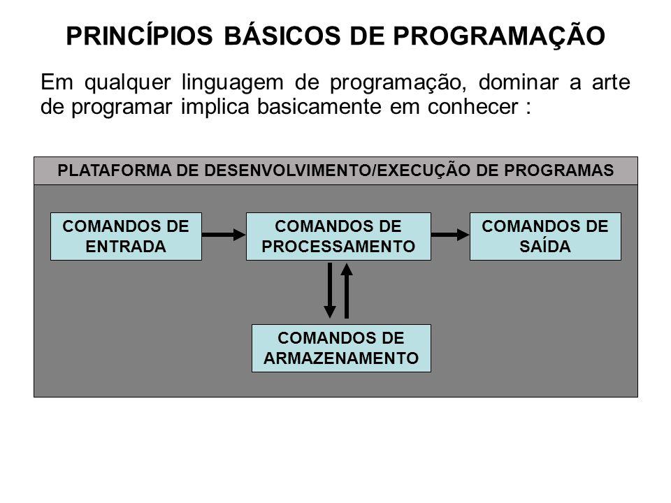 PRINCÍPIOS BÁSICOS DE PROGRAMAÇÃO