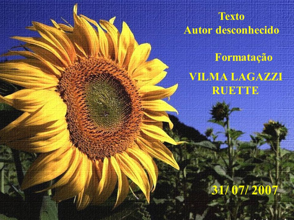 Texto Autor desconhecido Formatação VILMA LAGAZZI RUETTE 31/ 07/ 2007