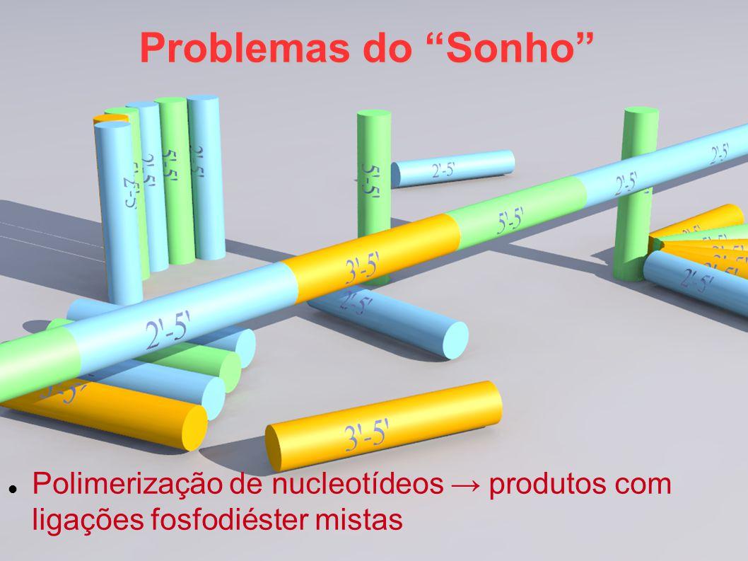 Problemas do Sonho Polimerização de nucleotídeos → produtos com ligações fosfodiéster mistas