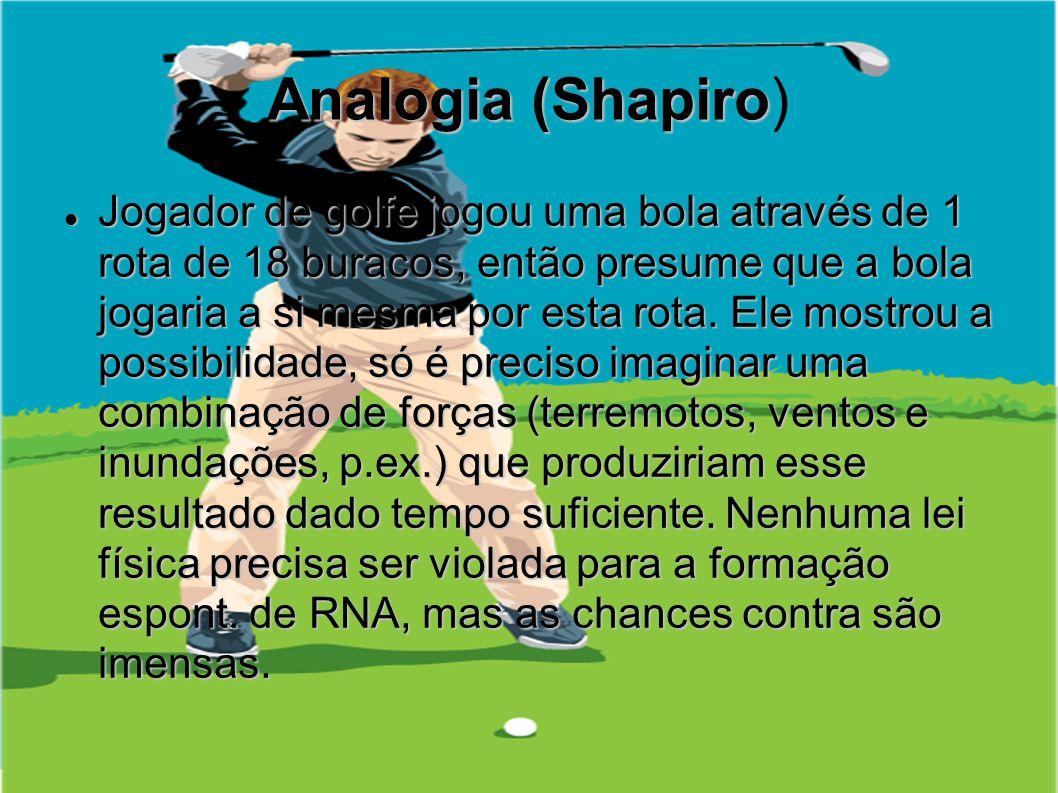 Analogia (Shapiro)
