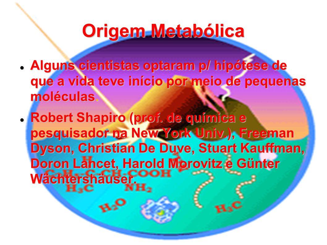 Origem Metabólica Alguns cientistas optaram p/ hipótese de que a vida teve início por meio de pequenas moléculas.