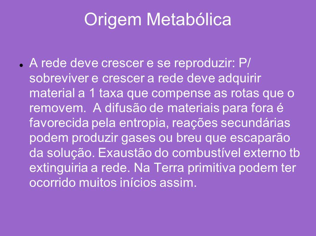 Origem Metabólica