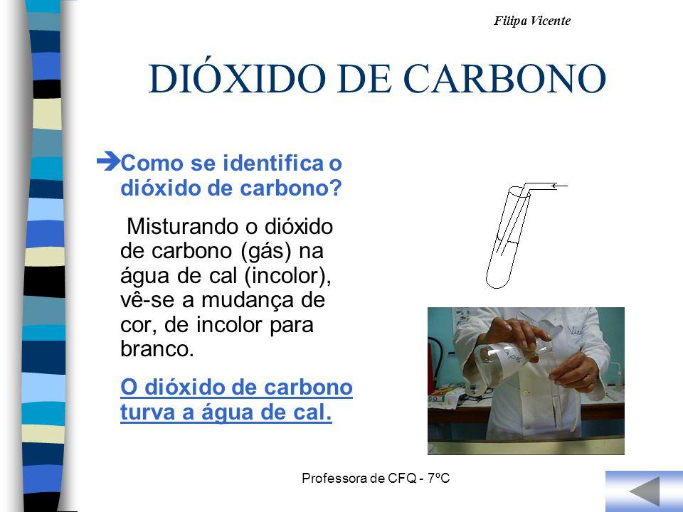 DIÓXIDO DE CARBONO Como se identifica o dióxido de carbono
