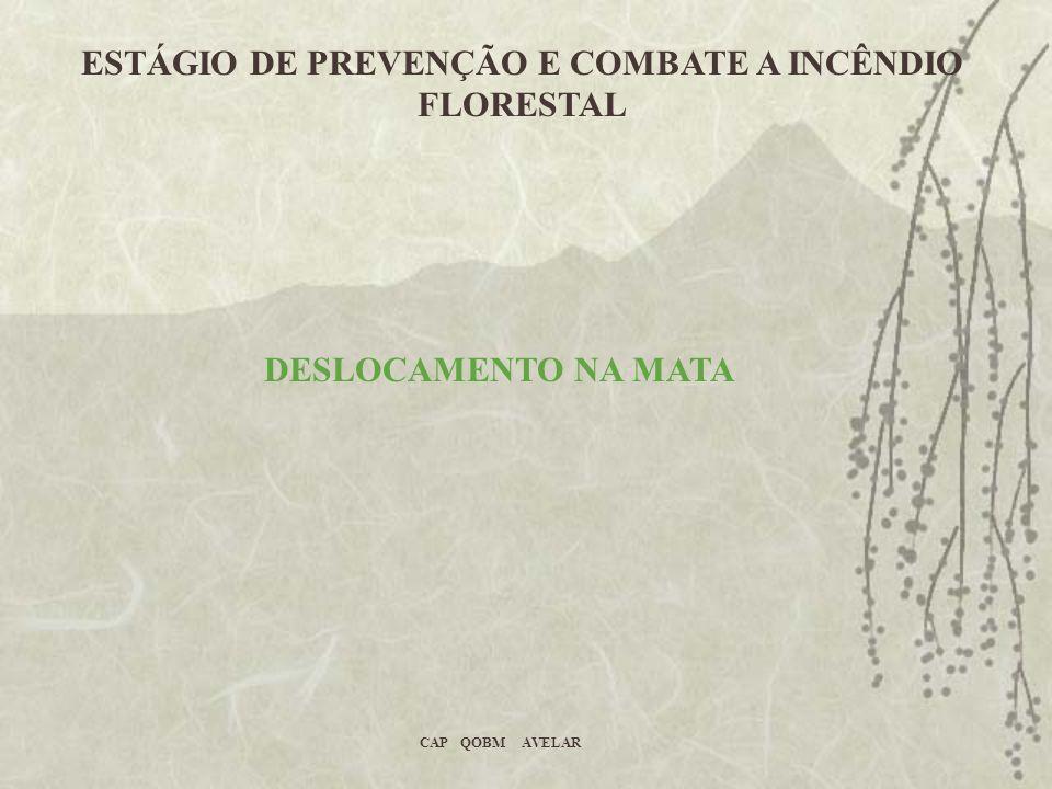 ESTÁGIO DE PREVENÇÃO E COMBATE A INCÊNDIO FLORESTAL