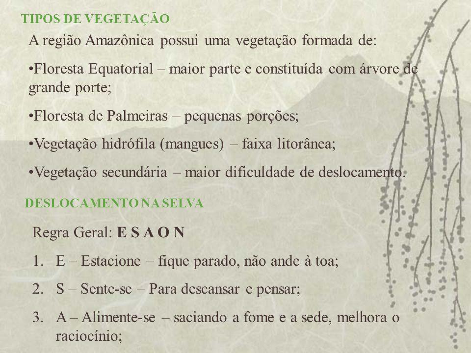A região Amazônica possui uma vegetação formada de: