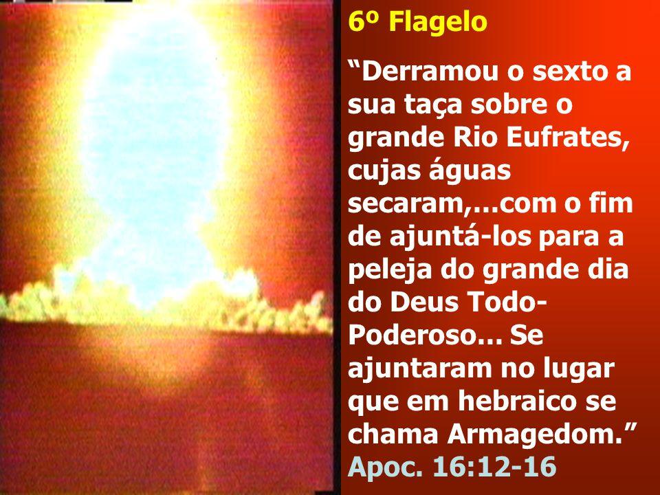 6º Flagelo