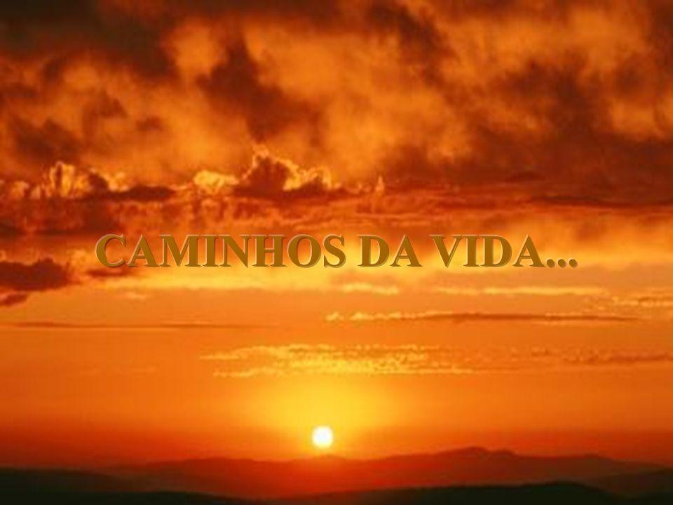 CAMINHOS DA VIDA...