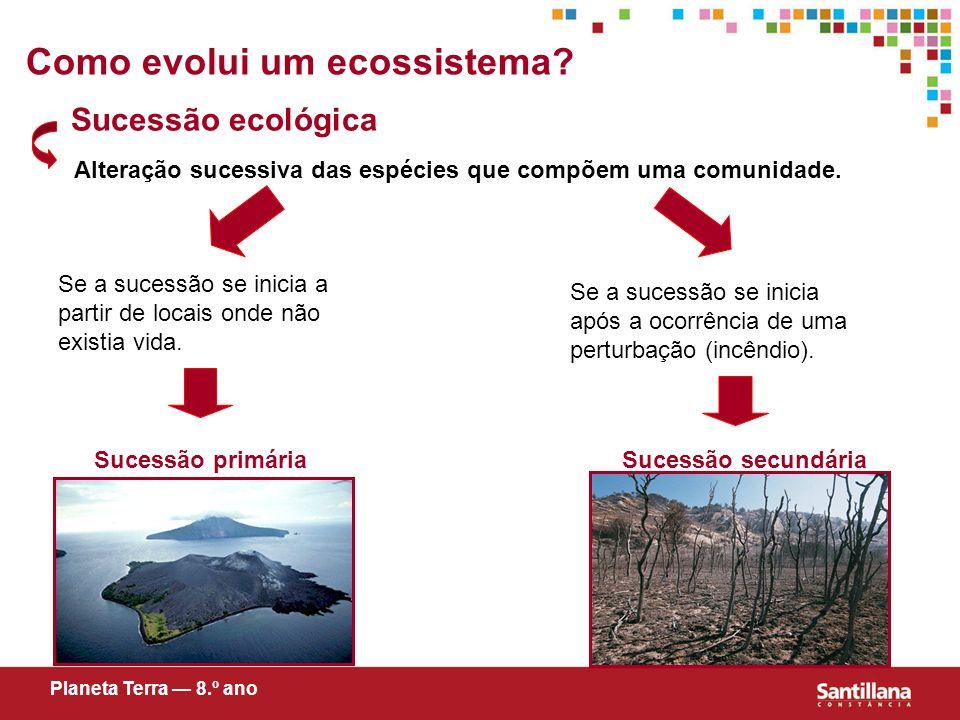Como evolui um ecossistema