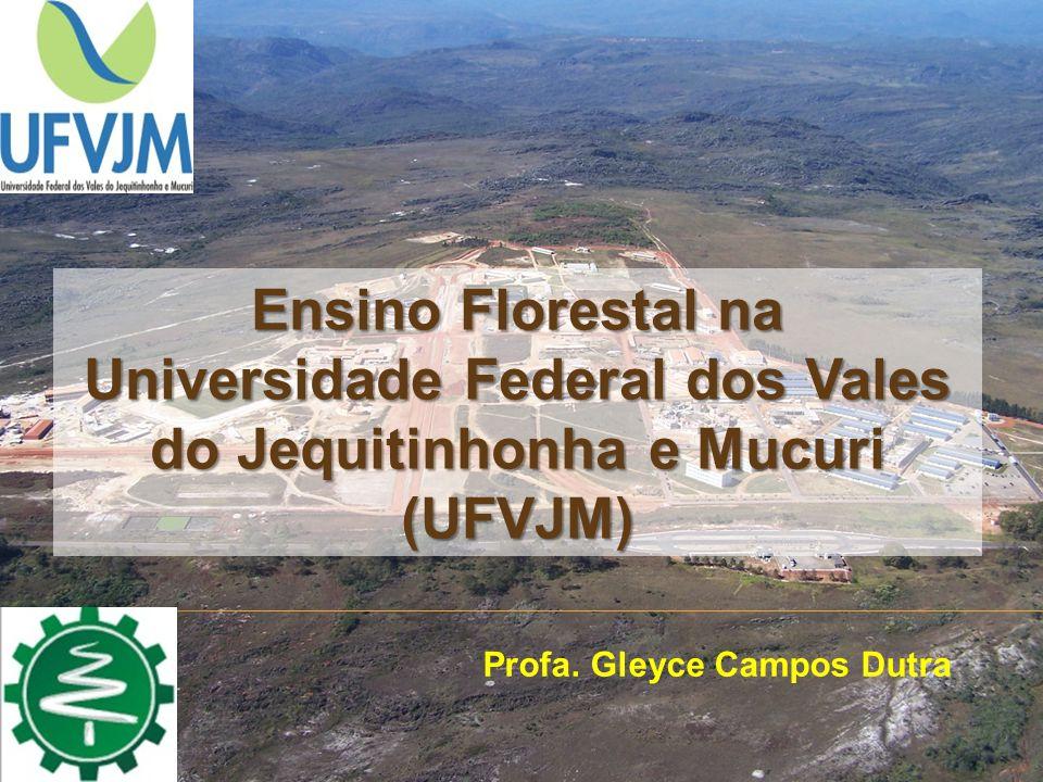 Ensino Florestal na Universidade Federal dos Vales do Jequitinhonha e Mucuri (UFVJM)