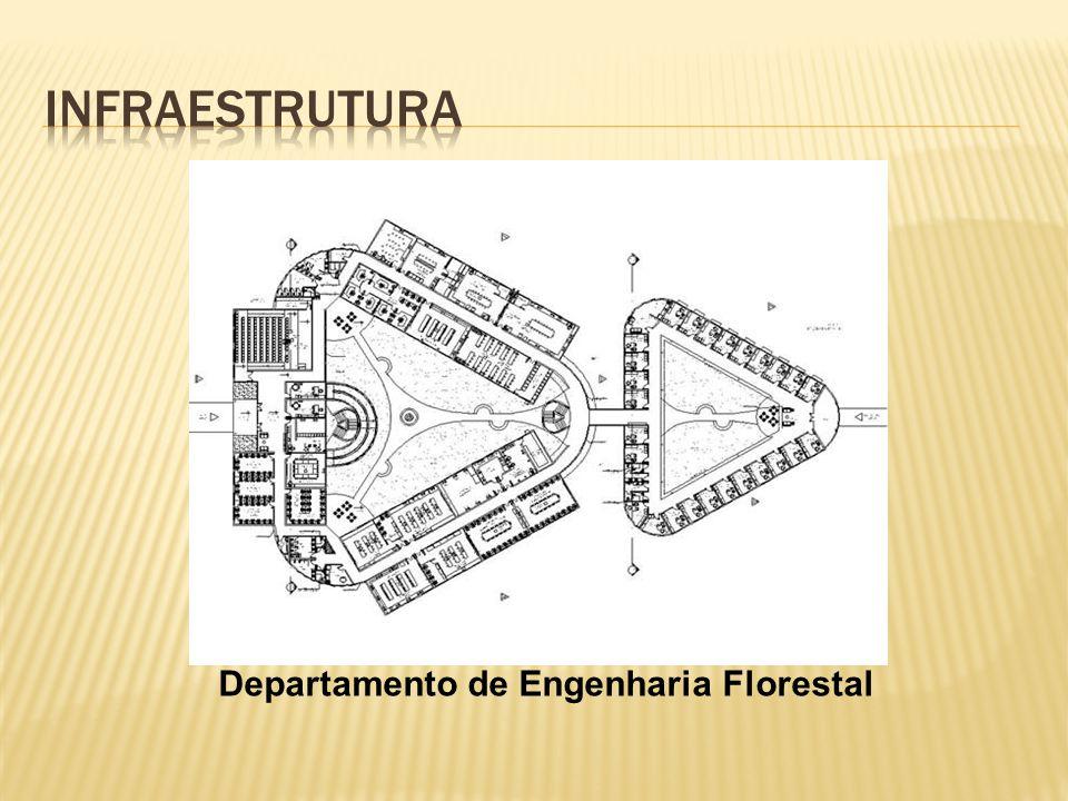 Departamento de Engenharia Florestal