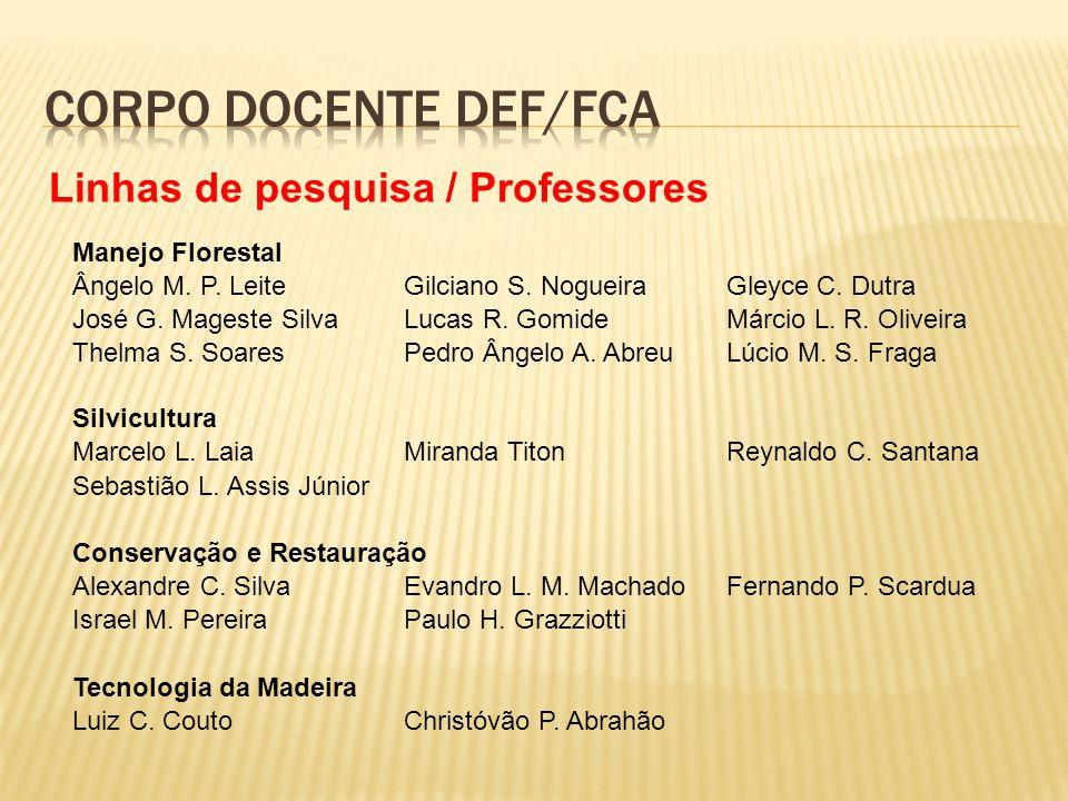 Corpo docente DEF/FCa Linhas de pesquisa / Professores
