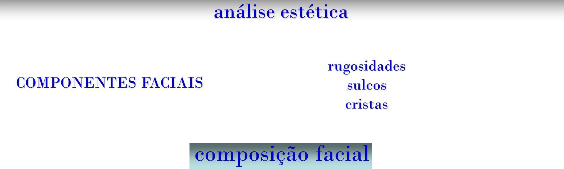 composição facial análise estética rugosidades sulcos