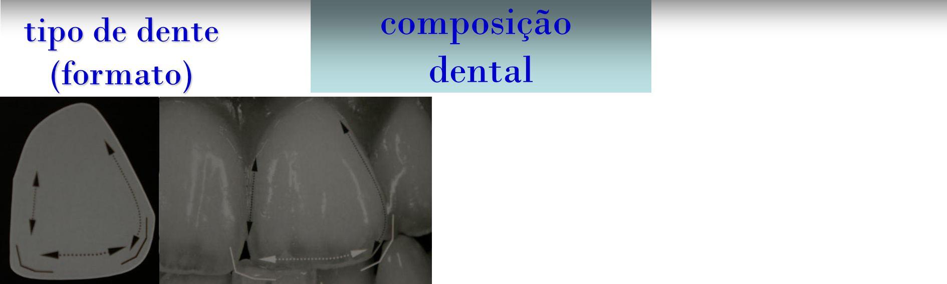 análise estética composição dental tipo de dente (formato)
