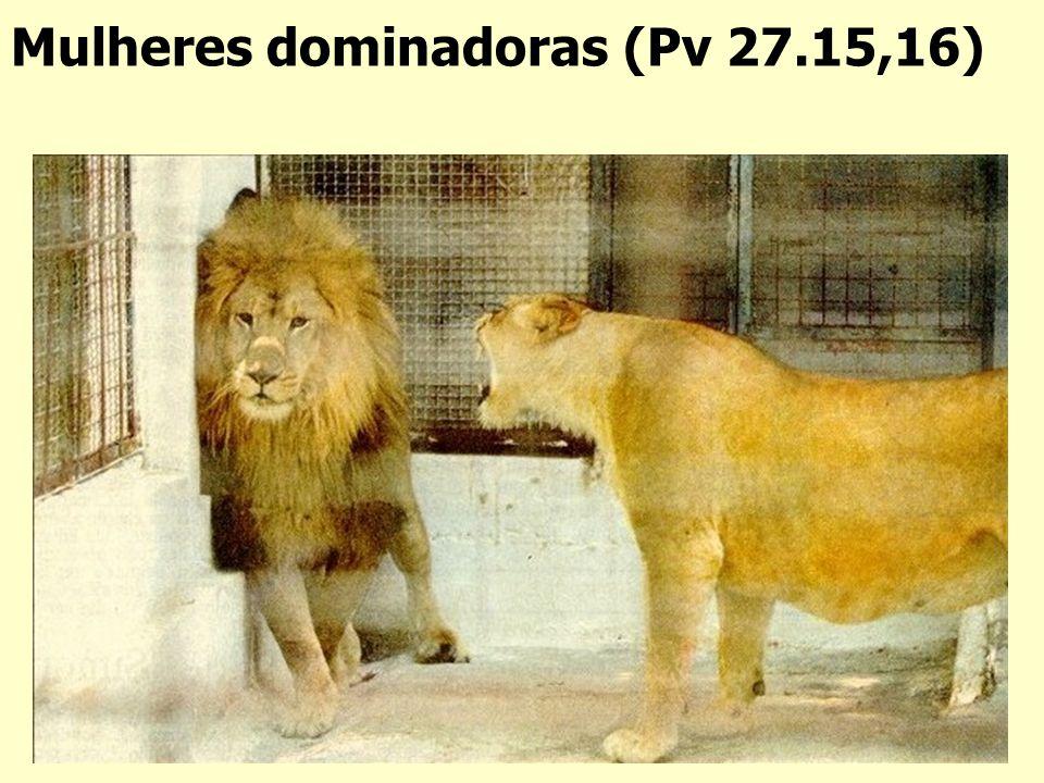 Mulheres dominadoras (Pv 27.15,16)