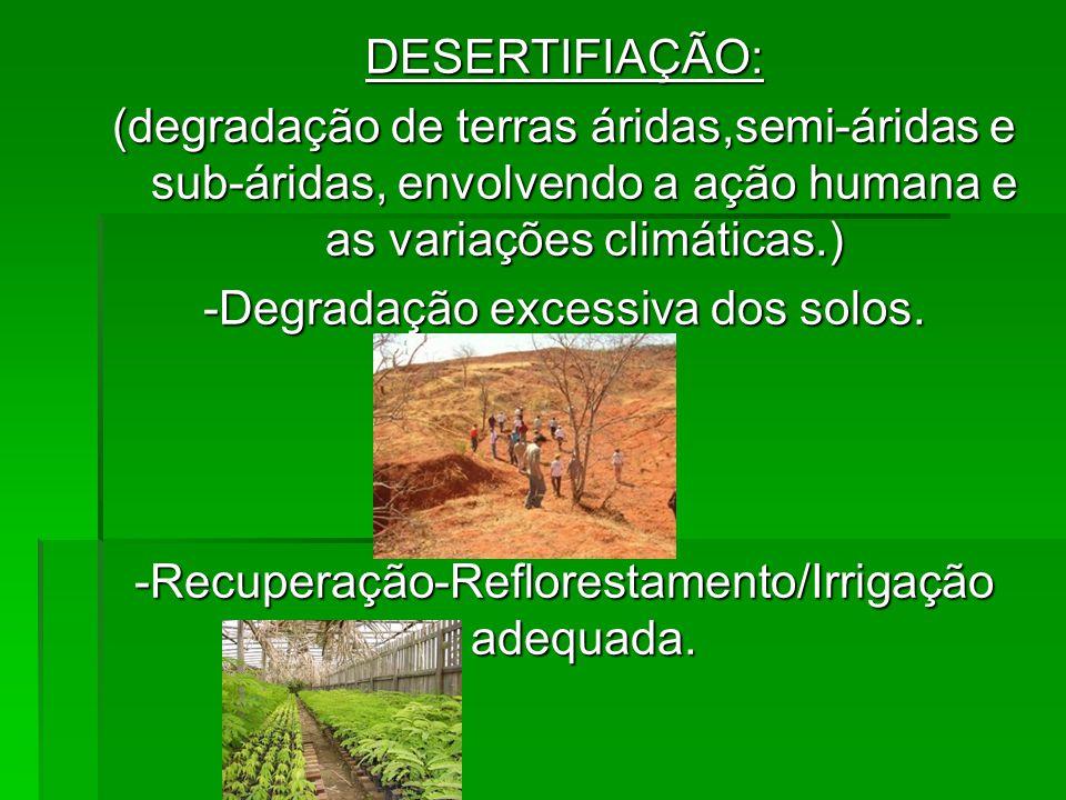 -Degradação excessiva dos solos.
