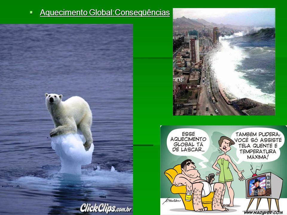 Aquecimento Global:Conseqüências