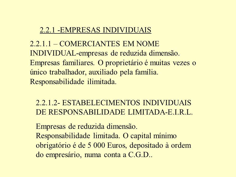 2.2.1 -EMPRESAS INDIVIDUAIS