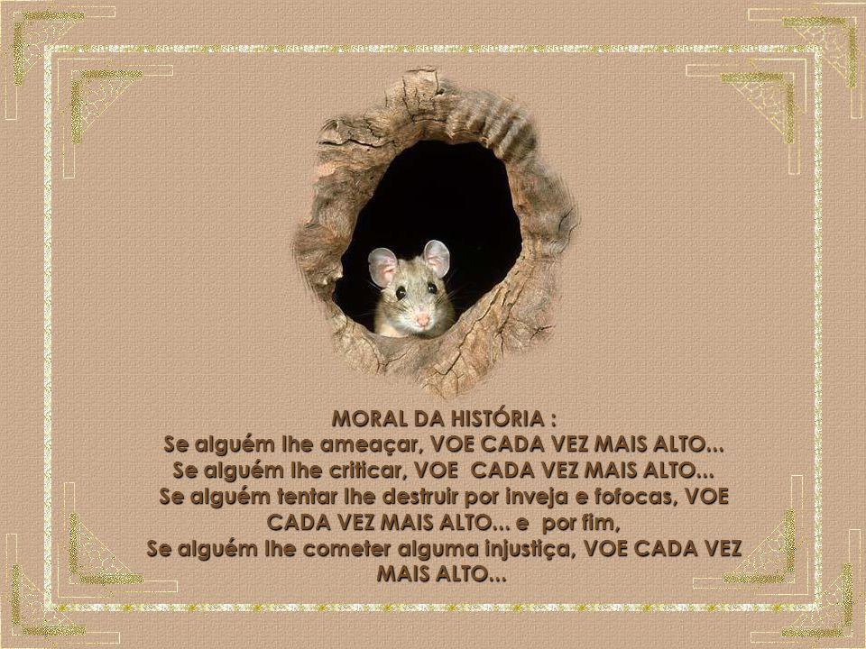 O Rato MORAL DA HISTÓRIA : Se alguém lhe ameaçar, VOE CADA VEZ MAIS ALTO... Se alguém lhe criticar, VOE CADA VEZ MAIS ALTO...