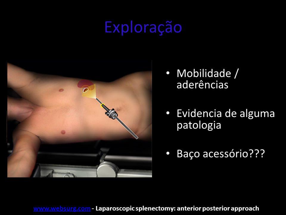 Exploração Mobilidade / aderências Evidencia de alguma patologia