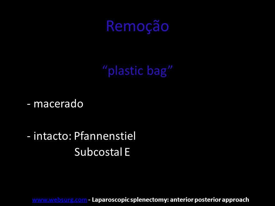 Remoção plastic bag - macerado - intacto: Pfannenstiel Subcostal E
