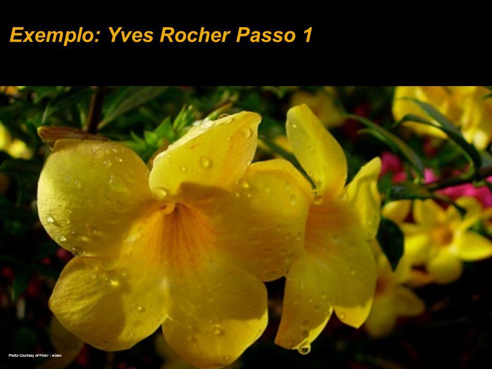 Exemplo: Yves Rocher Passo 1