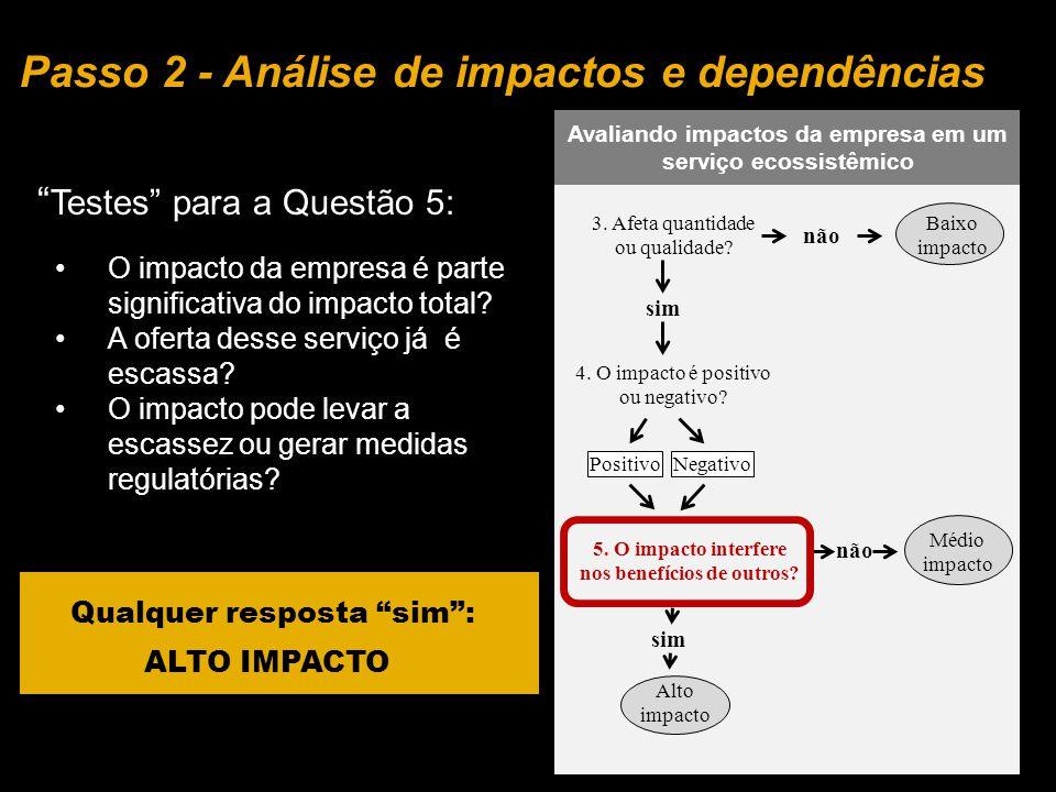 Passo 2 - Análise de impactos e dependências