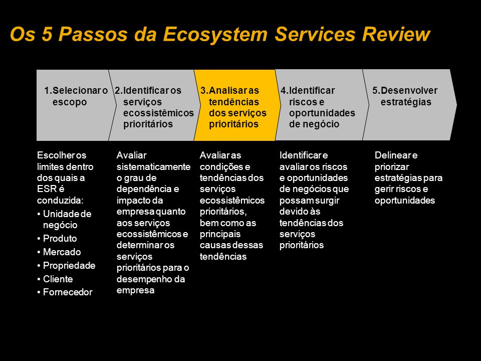 Os 5 Passos da Ecosystem Services Review