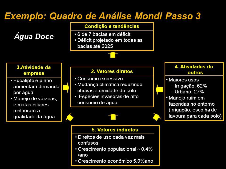 Exemplo: Quadro de Análise Mondi Passo 3
