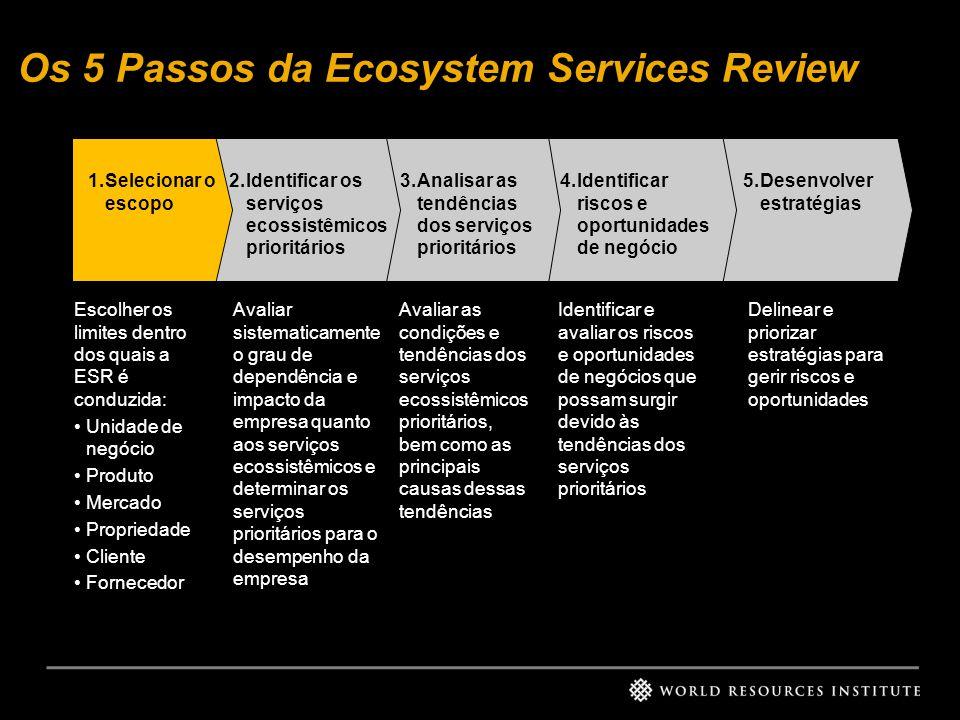 Os 5 Passos da Ecosystem Services Review