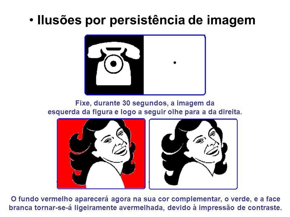 Ilusões por persistência de imagem