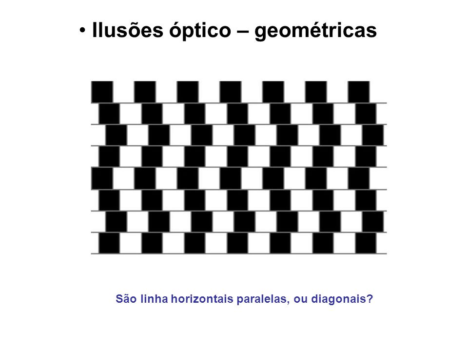 Ilusões óptico – geométricas