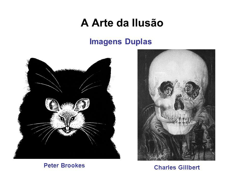 A Arte da Ilusão Imagens Duplas Peter Brookes Charles Gillbert
